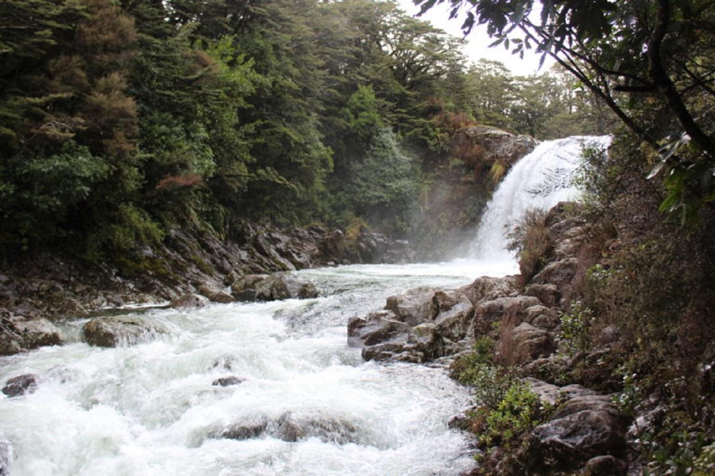 Tawhai Falls (Foto: Tati Sisti)