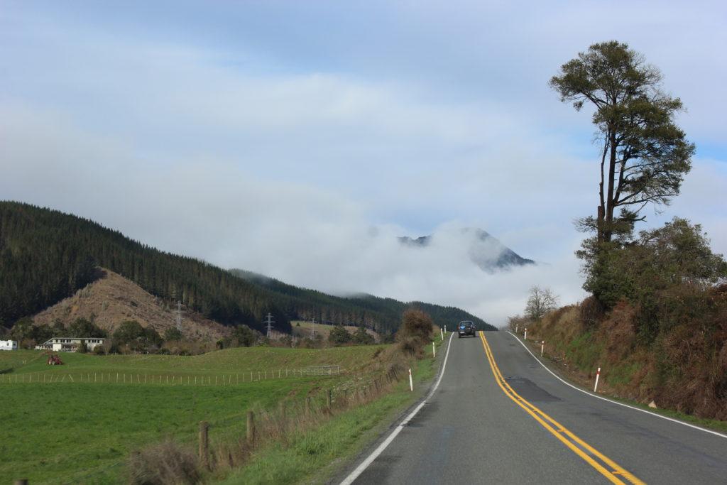 Estradas da Nova Zelândia (Foto: Tati Sisti)