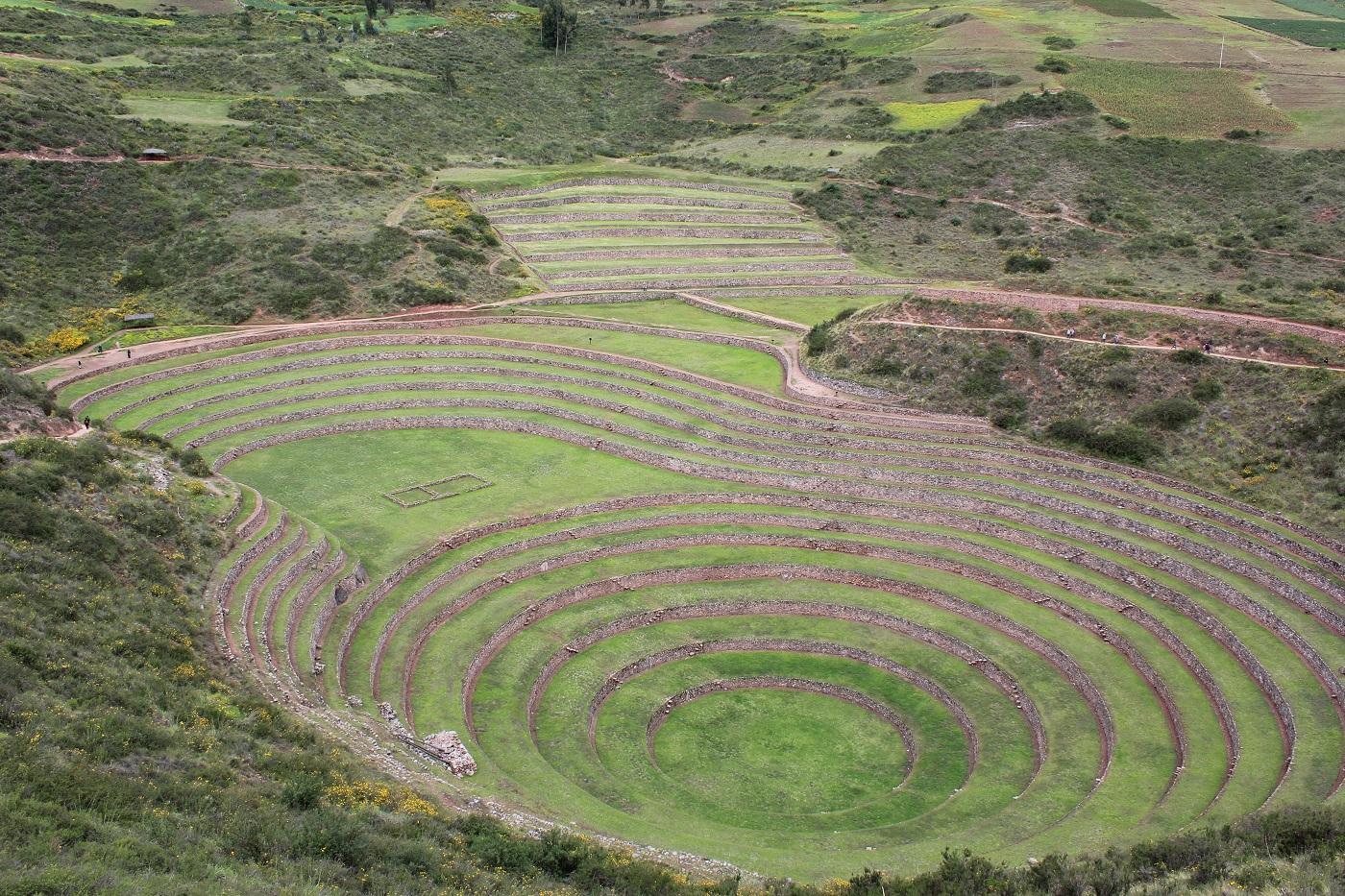 Moray (Foto: Tati Sisti)