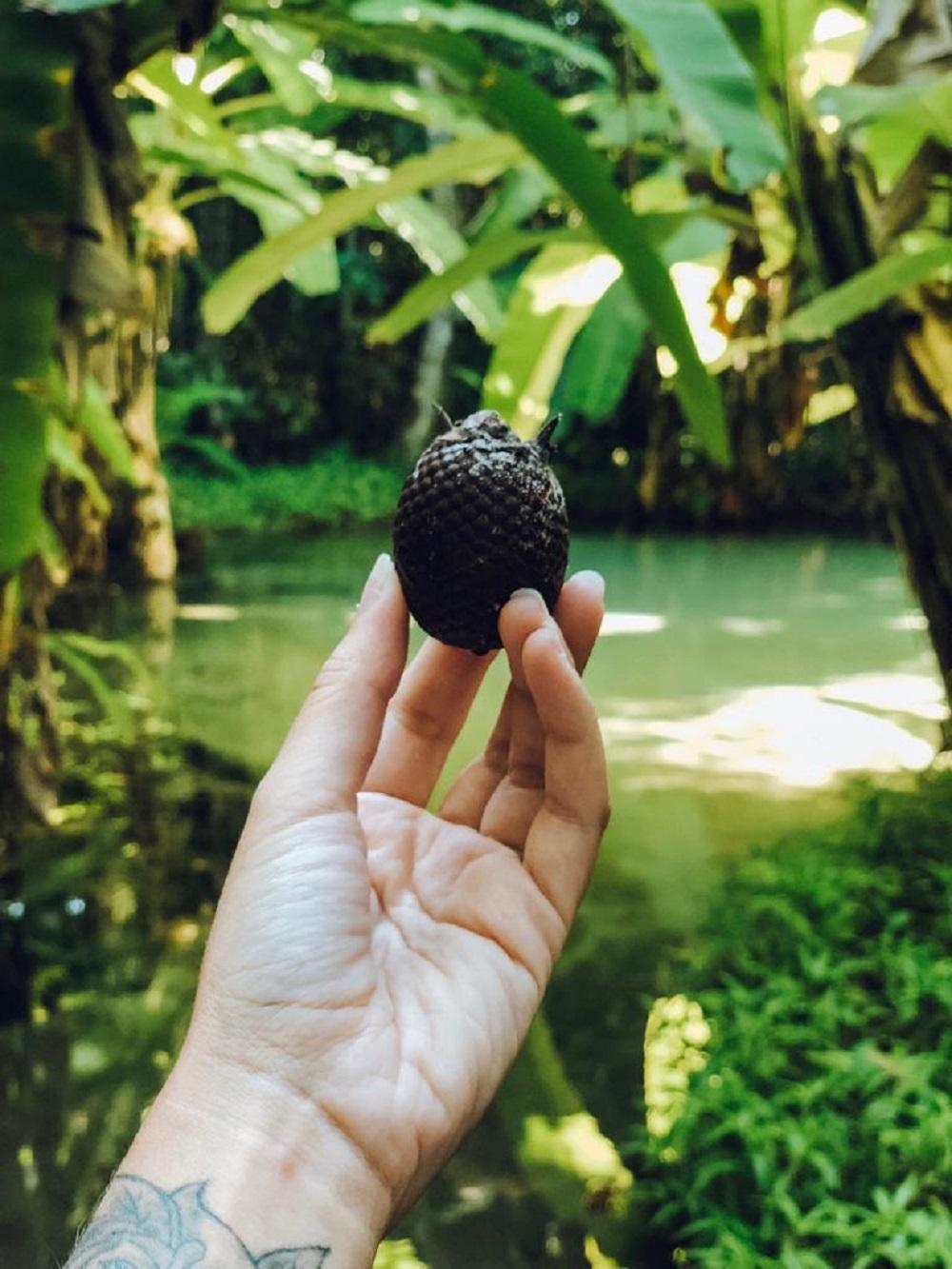 Buriti, fruta típica do Jalapão (Foto: Tati Sisti)