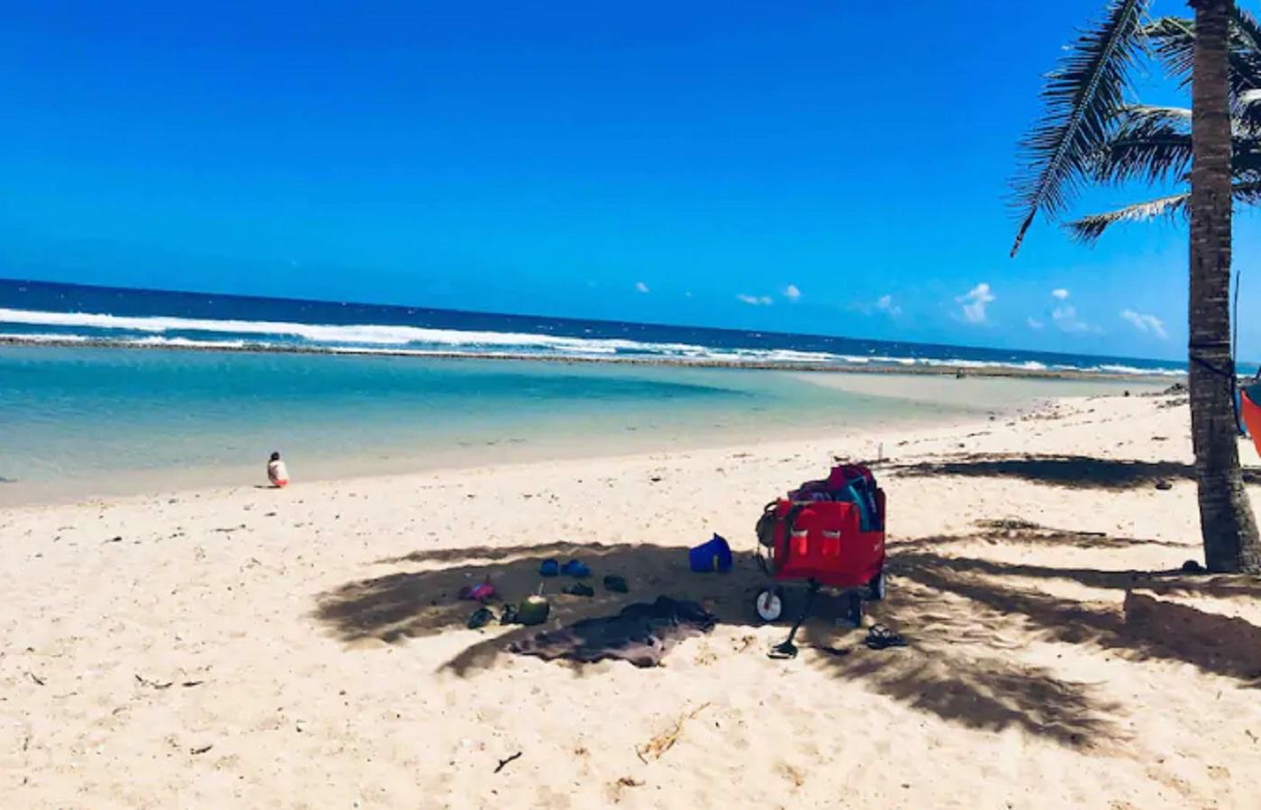 Sobrevivência em Ilha deserta com cocos(Foto: Divulgação)