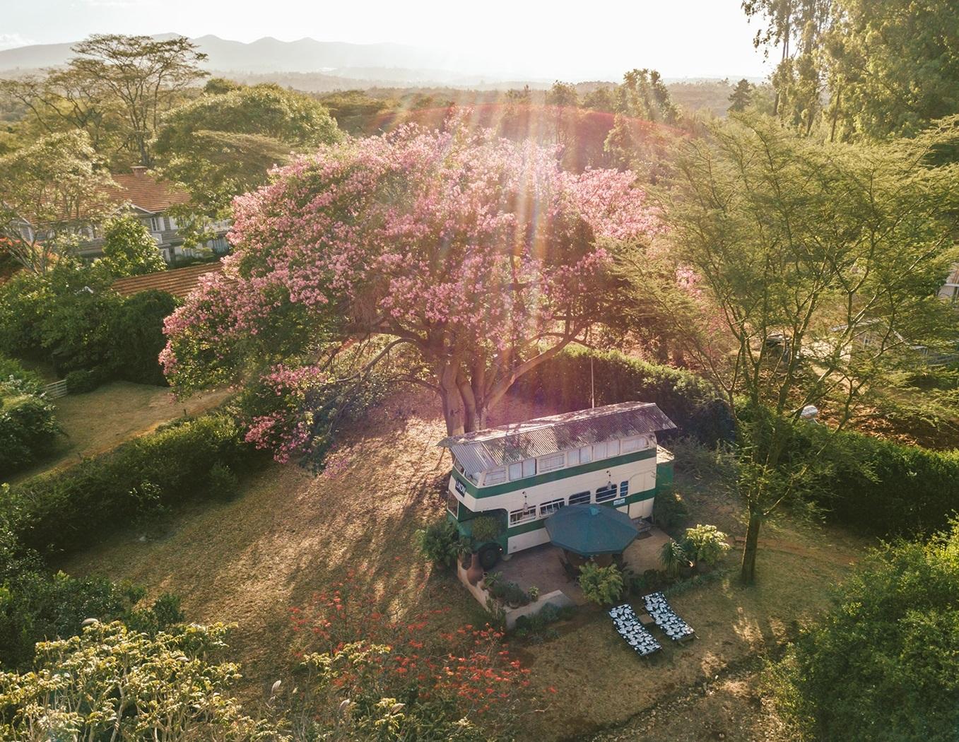 Brandy, o ônibus (Foto: Divulgação)