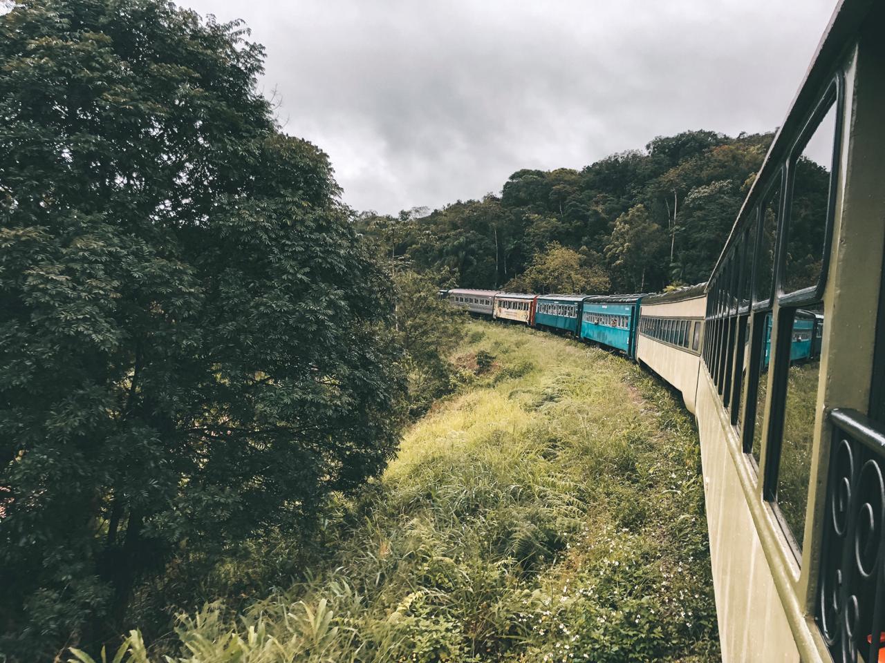 Passeio de trem para Morretes (Foto: Trip To Follow)