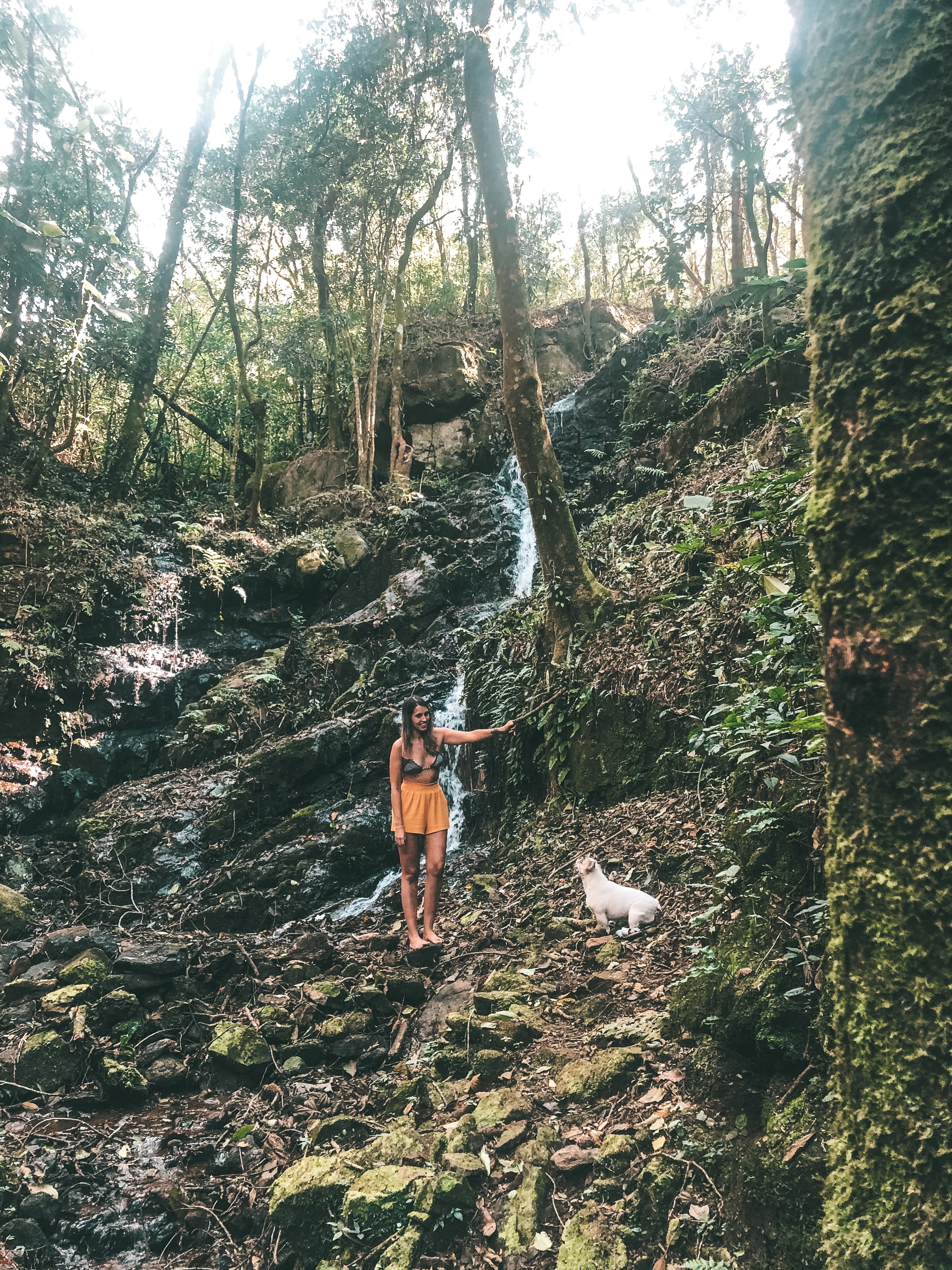 Uma das cachoeiras dentro da propriedade (Foto: Trip To Follow)
