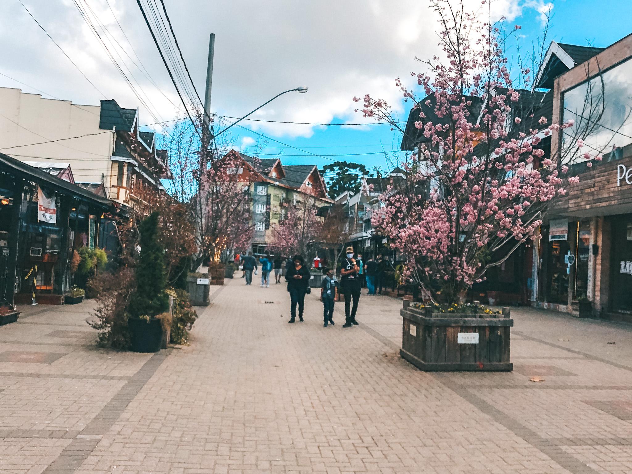 Vila Capivari, em Campos do Jordão (Foto: Trip To Follow)